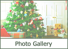 christmas photos pictures designs ideas