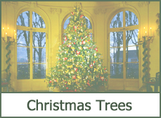 christmas trees designs ideas