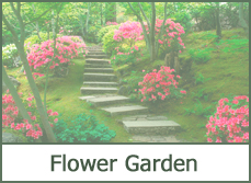 Flower Garden Designs Ideas