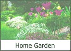 home garden designs ideas pictures