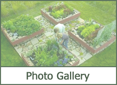 Garden Pictures Photo Gallery