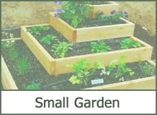 small garden designs ideas pictures