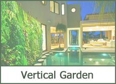 vertical garden designs ideas pictures photos