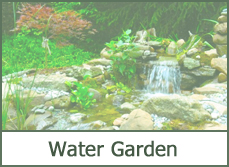 water garden designs ideas pictures