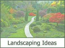 landscape designs ideas