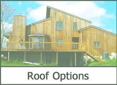 house roof designs ideas pictures plans