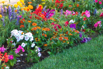 Most popular flower garden bed designs layouts photos with popular design ideas and do it yourself plans