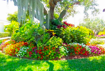 Simple flower garden bed designs layouts designs ideas pictures and diy plans