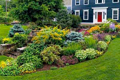 front yard design ideas no grass - Front Yard Design Ideas