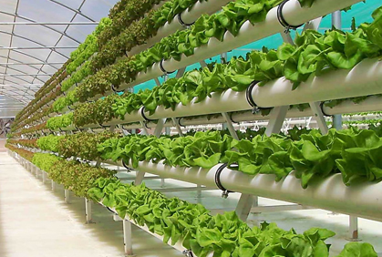 Indoor Hydroponic Garden Systems Plant Grow Lights