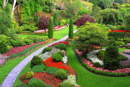 Garden Design Garden Design with Best Garden Plants Pictures – Best Garden Plants