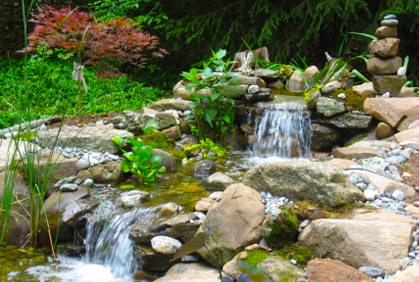 Water Garden Ideas Pictures Backyard Designs Plans
