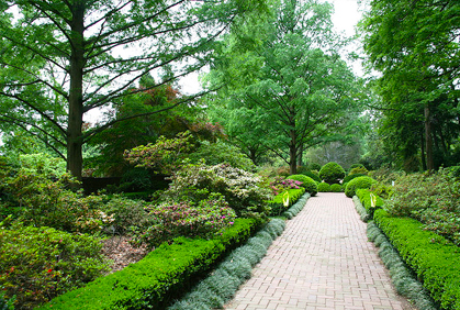 Walkway ideas pictures and designs for shrubs bushes and landscaping plans.