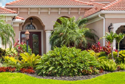 Best 2015 pictures of most popular simple landscaping design ideas front yard bushes shrubs palm tree