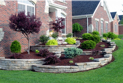 Best types of trees for landscaping front backyard - Landscaping with trees ideas ...