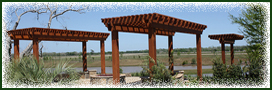 covered pergola designs