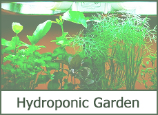 Indoor hydroponic garden systems top 2015 reviews Easy Hydro Setup