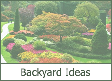 Shrubs for landscaping ideas for backyard designs 2015.