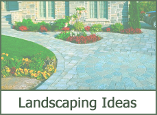 front yard landscaping with shrubs