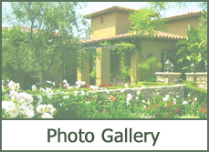 photo gallery landscaping ideas and pictures