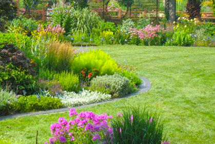 Flower Bed Designs