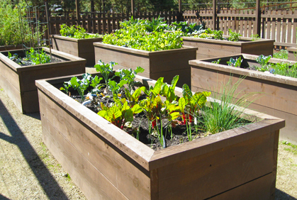 Garden Planters and Boxes