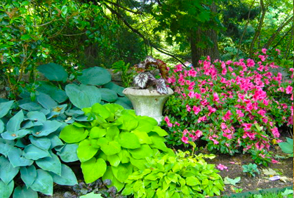 Best shade plants for landscaping pictures plans ideas for Garden design ideas shady areas