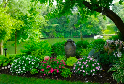 Best Shade Plants For Landscaping Pictures Plans Ideas