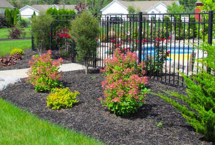 Landscaping Shrubs And Bushes Ideas Pictures Amp Plans