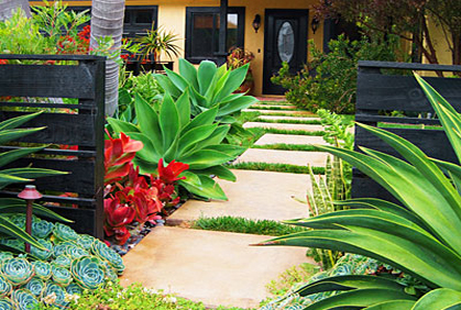 Front Yard Makeover Ideas Photos Landscaping Designs