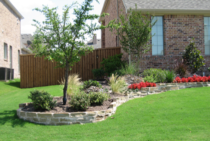 Best Types of Trees for Landscaping Front & Backyard on Backyard Landscaping Ideas With Trees id=21067