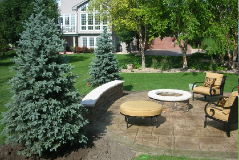 Patio Landscaping Trees